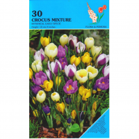 Crocus Early Species Mixed 30 stuks