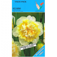 Narcis Double Ice King 18 stuks