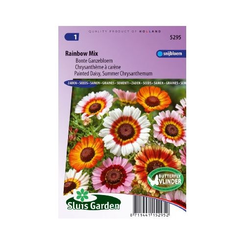 Chrysanthemum carinatum rainbow mix Margriet