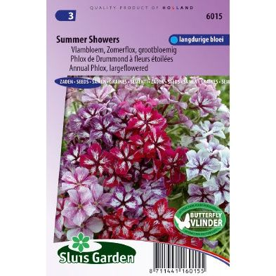 Phlox drummondii Summer Showers mix