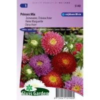 Callistephus chinensis prinses aster mix