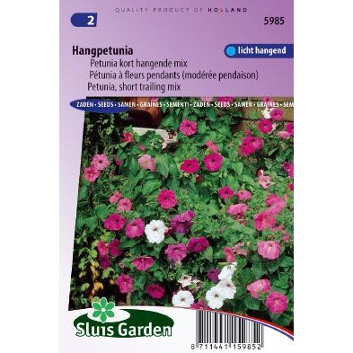 Petunia zaden hybride pendula choice mixed